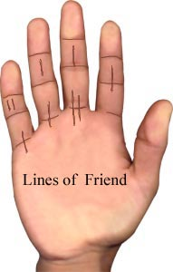 lines of friends