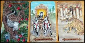 Daily-tarot-spread