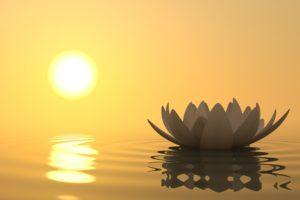 Healing-Effects-of-Meditation